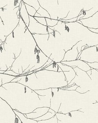 Winter Branches Wallpaper White Off Whites by
