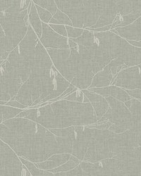 Winter Branches Wallpaper Blacks by