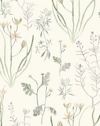 Alpine Botanical Wallpaper White Off Whites by