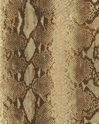 Python Wallpaper by