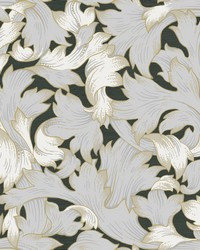 Acanthus Toss Wallpaper Black Gray by