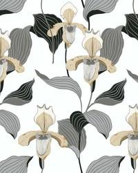 Lady Slipper Wallpaper Gold Gray by