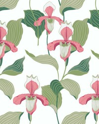 Lady Slipper Wallpaper Coral Green by