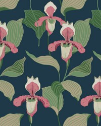 Lady Slipper Wallpaper Coral Navy by