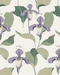 Lady Slipper Wallpaper Lavender Green by