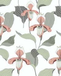 Lady Slipper Wallpaper Peach Gray by
