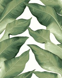 Beverly Hills Wallpaper White Green by