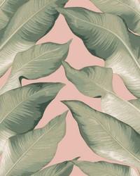 Beverly Hills Wallpaper Peach Green by