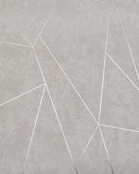 Nazca Wallpaper Light Grey Silver by