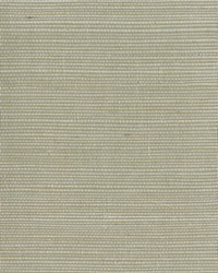Grasscloth Sisal Wallpaper palest green  beige by