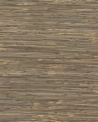 River Grass Wallpaper Blacks by