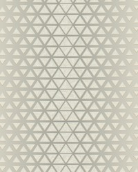 Rhythmic Wallpaper Grey  Gray by