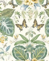 Tropical Butterflies Wallpaper Beige Blue by