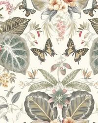 Tropical Butterflies Wallpaper Neutral Red by