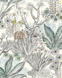 Flowering Desert Wallpaper Black by