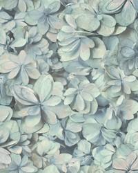 Hydrangea Bloom Wallpaper Spa Pink by