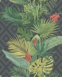 Tropical Oasis Stripe Wallpaper Black by