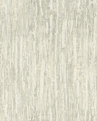 Weathered Paint Wallpaper Grey by