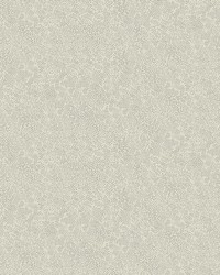 Champagne Dots Wallpaper Beige by