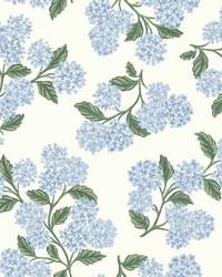 Hydrangea Wallpaper Blue White by