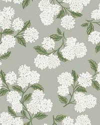 Hydrangea Wallpaper Gray by