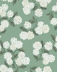 Hydrangea Wallpaper Jade by