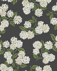 Hydrangea Wallpaper Black White by