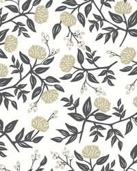 Peonies Wallpaper White Black by