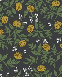 Peonies Wallpaper Black Gold by