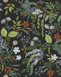 Juniper Forest Wallpaper Black by
