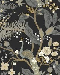 Peacock Wallpaper Black by