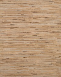 Lustrous Grasscloth Wallpaper Browns by