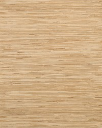 Lustrous Grasscloth Wallpaper Yellows by