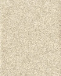 Fossil Wallpaper White Off Whites by