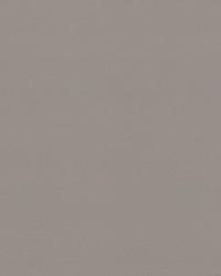 Serge Wallpaper Gray by