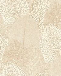 Seasons Wallpaper - Gold White Beiges by