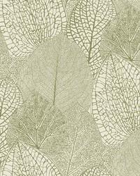 Seasons Wallpaper - Green Cream Greens by
