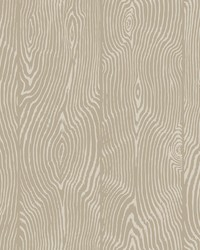 Springwood Wallpaper - Taupe White Off Whites by
