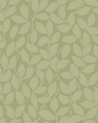 Leaf and Vine Wallpaper - Sage Greens by