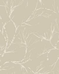 White Pine Wallpaper - Pewter Blacks by