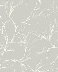 White Pine Wallpaper - Gray White Off Whites by