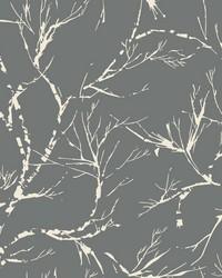 White Pine Wallpaper - Dark Gray Blacks by