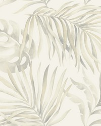 Paradise Palm Wallpaper Gray by