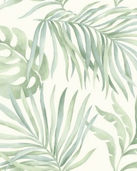 Paradise Palm Wallpaper Light green by
