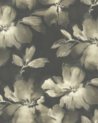 Midnight Blooms Wallpaper Black by
