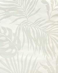 Paradise Palm Wallpaper White by