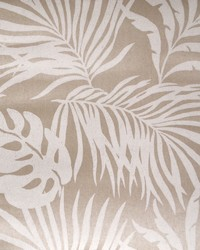 Paradise Palm Wallpaper Beige by