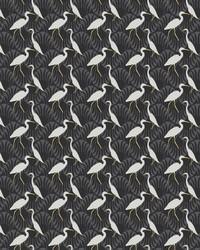 Evening Egret Wallpaper Black by