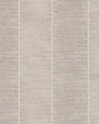 Southwest Stripe Wallpaper Tan   Neutrals by