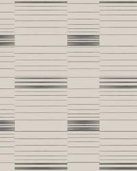 Dashing Stripe Wallpaper Black Beige by